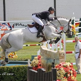 McLain Ward, USA, at Spruce Meadows by Lena Arkell - Sports & Fitness Other Sports ( mclain ward, horses, horse, calgary, spruce meadows, show jumping, showjumping )