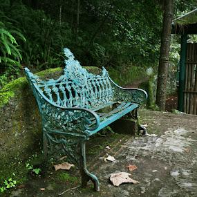 Los Tecajetes by Cristobal Garciaferro Rubio - City,  Street & Park  City Parks ( los tecajetes, benches, park, bench, jalapa, pwcbenches )