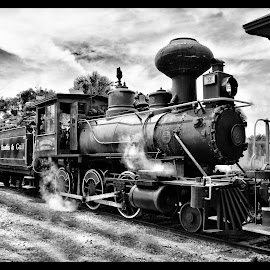 Traves Euestus and Gulf RR by James Eickman - Transportation Trains ( engine, black and white, railroad, train, trains )