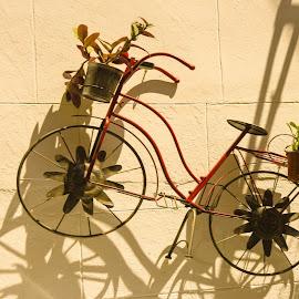 the bike  by Anto Boyadjian - Artistic Objects Toys ( bicycles, bike, toy, toys, bicycle )