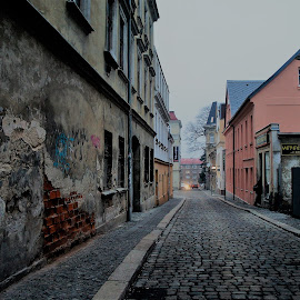 Street in the north Bohemia by Luboš Zámiš - Uncategorized All Uncategorized