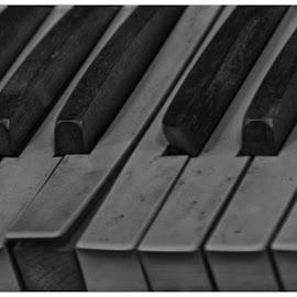 Keys  by Lorraine D.  Heaney - Black & White Objects & Still Life