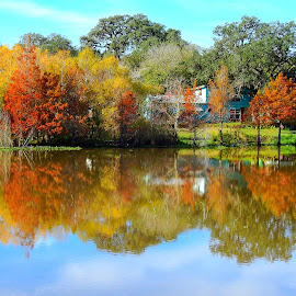 Fall reflections on the Nueces River by Cathy Hood - Landscapes Waterscapes
