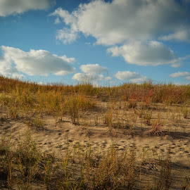 Sand Dunes by Robert Coffey - Landscapes Beaches ( clouds, michigan, sand, dunes, grass, lake )