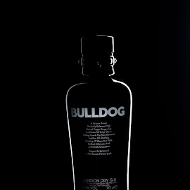 bulldog by Joao Bettencourt - Food & Drink Alcohol & Drinks ( drink, drunk, bottles, bottle, bar )