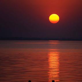by Dinesh Pandey - Landscapes Sunsets & Sunrises (  )