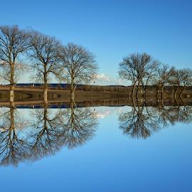 Nirvana on the magic lake.. by Željko Salai - Landscapes Waterscapes