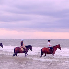 riding in the waves by Fred Goldstein - Sports & Fitness Other Sports ( riding, sea, france, beach, deauville )