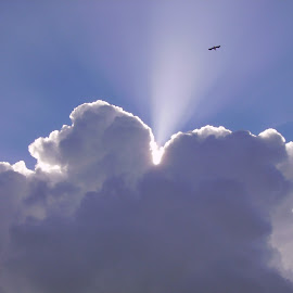 Cloud-burst  by Jill Hingyi - Landscapes Cloud Formations ( clouds, sky, seagulls, sunlight, thunderclouds, rays,  )