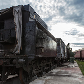 Old Train wagons by Jan kåre Paulsen - Transportation Trains