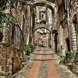 Climbing by Roberta Sala - City,  Street & Park  Street Scenes ( dolceacqua, village, street, street scene, italy )