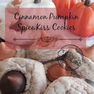 Cinnamon Spice Cookies Recipes
