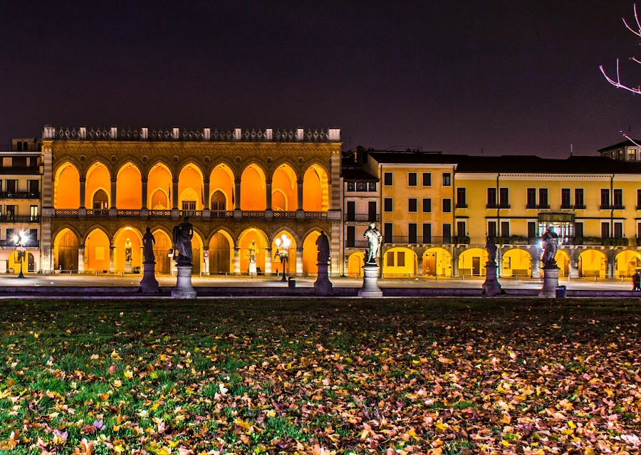 Prato della valle, Padova.. by night by Hariharan Venkatakrishnan - City,  Street & Park  Night