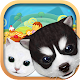 Pet of cookies - Coin Dozer -