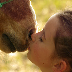 Love at first kiss by Giselle Pierce - Babies & Children Children Candids ( child, kiss, little girl, friends, girl, mane, horse, whiskers, hair, nose, kid )