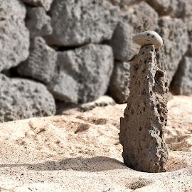 Lava Statue by Jackie Matthews - Nature Up Close Rock & Stone ( face, sand, lava, shadow, lanzarote, rock, beach, spain )