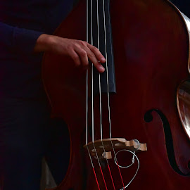 Jazz ! by Marco Bertamé - Artistic Objects Musical Instruments ( grund, contrabass, blues'n jazz rally, luxembourg )
