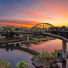 by Gordon Koh - Buildings & Architecture Bridges & Suspended Structures ( singapore )