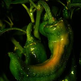 by Todd Klingler - Food & Drink Fruits & Vegetables