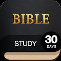 App 30 Day Bible Study Challenge - Offline Bible Study APK for Kindle