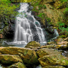 Spruce Flat Falls by Ron Plasencia - Landscapes Waterscapes ( waterfall, gsmnp )