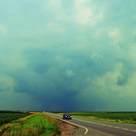 Storm in the plain by Vladimir Bogovac - Landscapes Weather ( clouds, distance, sky, forming, chasing, road, storm, plain, vojvodina,  )