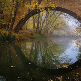 Conchuela by Roberto De Diego Martin - Landscapes Waterscapes ( aranda, puente conchuela, water, reflection, autumn, puente, arandilla, bridge, duero, river )
