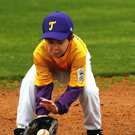 Fielding a grounder by Keith Johnston - Sports & Fitness Baseball ( ballpark, infield, player, grass, baseball, glove, youth, boy, kid )