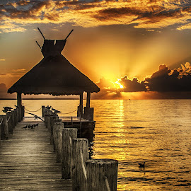 Sunrise at the Pier by Richard Michael Lingo - Buildings & Architecture Bridges & Suspended Structures ( gold, sunrise, pier, water, landscape,  )