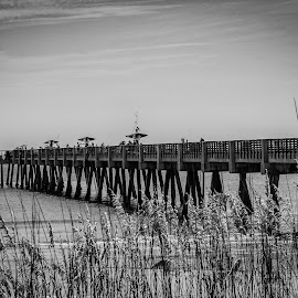 Pier Side by Byran Forbes - Landscapes Beaches ( 2015, florida, pier, jacksonville beach )