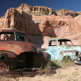 Derelict Trucks, Arizona by Daniel Gorman - Transportation Automobiles ( trucks, rusted trucks, psri 2012, arizona, rust, new mexico,  )