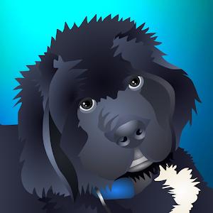 NewfyMoji For PC / Windows 7/8/10 / Mac – Free Download