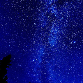 Milky Way on Hurricane Ridge by Jim O'Neill - Landscapes Starscapes ( washington, olympic park, night sky photography, hurricane ridge, milky way )