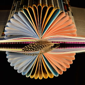 by Eugenija Seinauskiene - Artistic Objects Education Objects