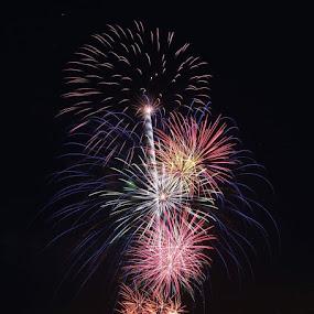 Fireworks by Sarah Douglas - Public Holidays July 4th (  )