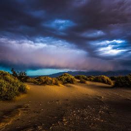 Desert Storm II by Mark Cote - Landscapes Deserts ( clouds, sand, desert, patterns, park, death, national, sunrise, valley, storm, landscape, light, shadows )