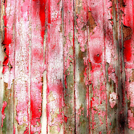 red by Janine Kain - Abstract Patterns ( urban, peeling-paint, red, wood, door, decay )