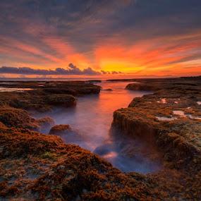 by Mac Evanz - Landscapes Sunsets & Sunrises
