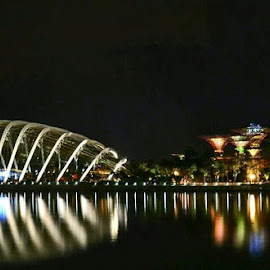 Gardens by the Bay, Singapore.  by Abdul Salim - Buildings & Architecture Architectural Detail (  )