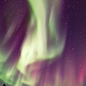 Northern Lights in Alaska by Justin Ng - Landscapes Starscapes ( northern lights, aurora, alaksa, justin ng )