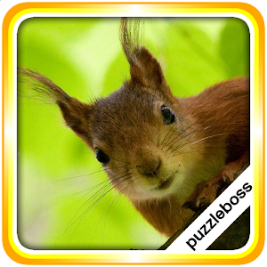 Jigsaw Puzzles: Squirrels for Android