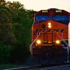 BNSF 6302  4766 by Jim Suter - Transportation Trains