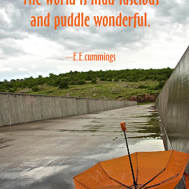 Puddle Wonderful by Kathy Suttles - Typography Captioned Photos ( cloudy day, windy, umbrella, puddle, wonderful )
