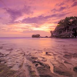 Tanah Lot Bali by Pratiwanjono Pratiwanjono - Landscapes Waterscapes