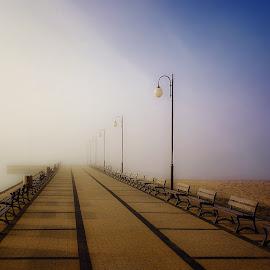 fog by Tomasz Marciniak - City,  Street & Park  City Parks ( winter, fog,  )
