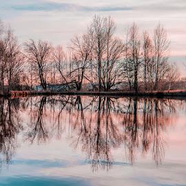 červánky  , Západ slunce ,odlesk na hladině , zrcadlení , zrcadlení stromů by Monika Sedláčková - Landscapes Waterscapes ( červánky )