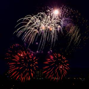 8317 jpg Firework Aug -18-1.jpg