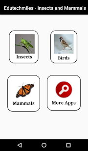 Learn Insects and Mammals - screenshot