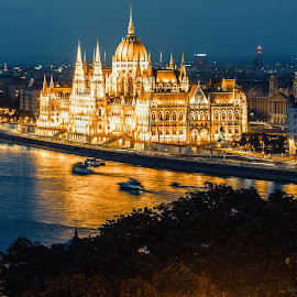 Hungarian parliament at night by Mo Kazemi - Buildings & Architecture Public & Historical ( budapest hungary, night, hungarian parliament, nightscape, budapest, parliament, night scene, landscape, night photography, hungary )