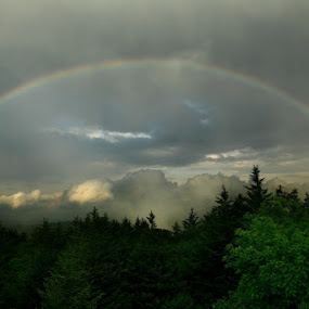My Bow in the Cloud by Forest Wander - Landscapes Weather ( nature, cloud, earth, rainbow )